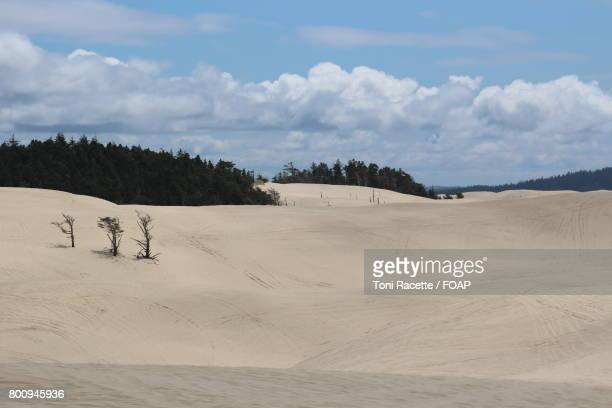 view of sand dunes - file:sand_dunes.jpg stock pictures, royalty-free photos & images