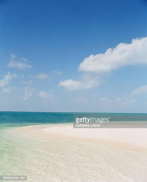 View of sandy seashore