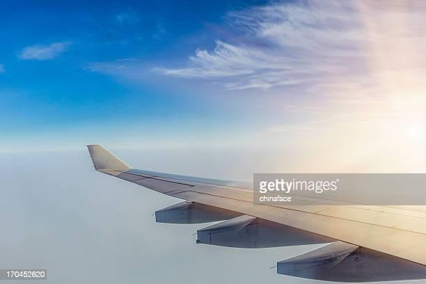 Vista panorámica de la campiña a través de avión