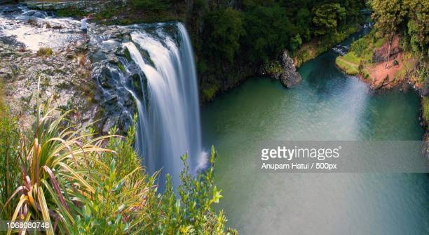 view of scenic waterfall - northland new zealand stock pictures, royalty-free photos & images