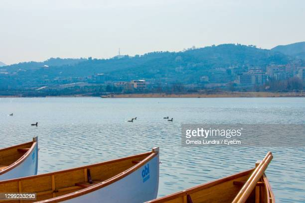 view of seagull moored in sea against sky - tirana stock pictures, royalty-free photos & images
