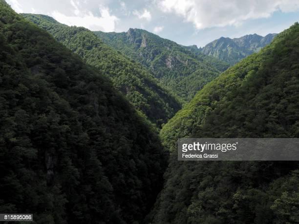 View of Sementina Valley from Carasc Suspension Bridge