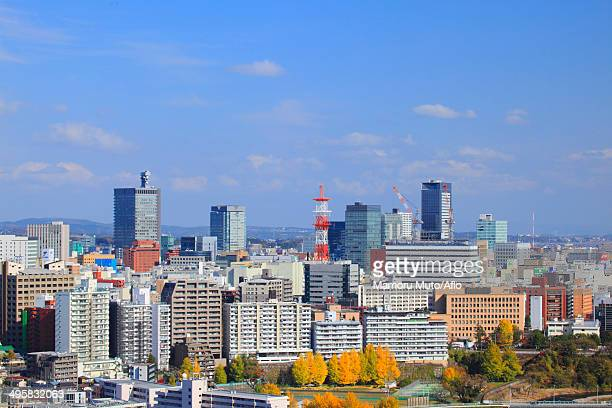 View of Sendai, Miyagi Prefecture, Japan