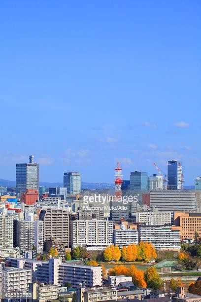 View of Sendai, Miyagi Prefecture, Japan