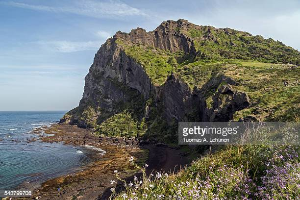 view of seongsan ilchulbong on jeju island - jeju stock photos and pictures