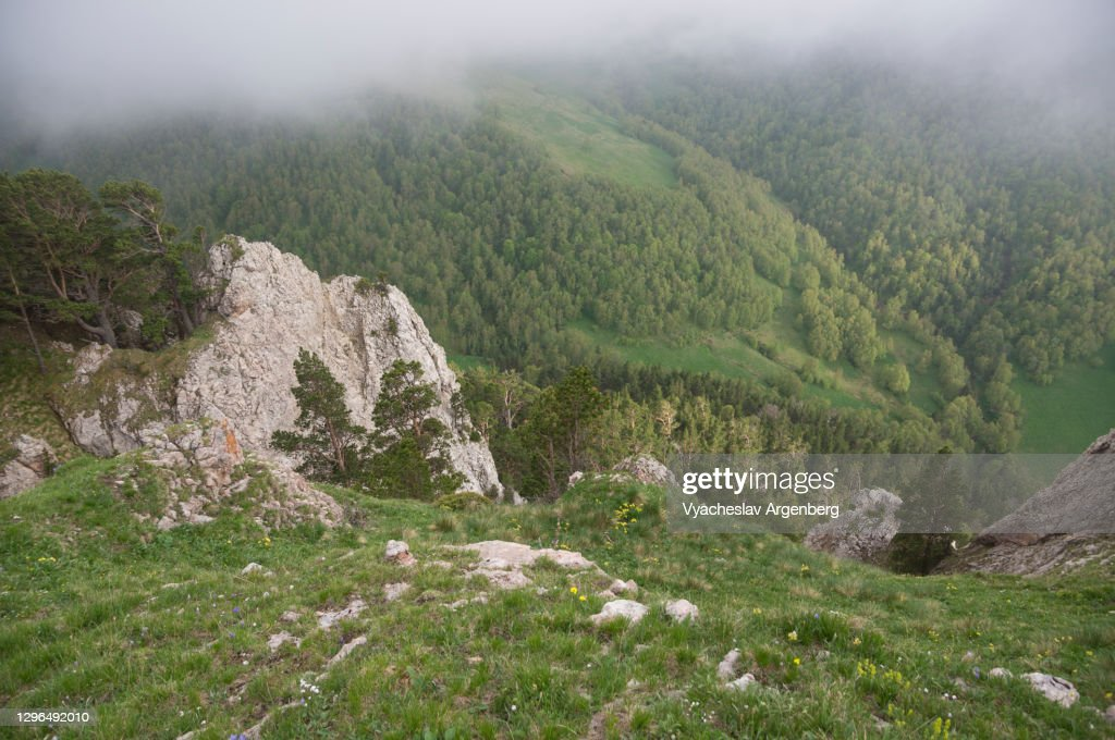 View of Shisha Valley from above, Caucasus Biosphere Reserve : Stock Photo