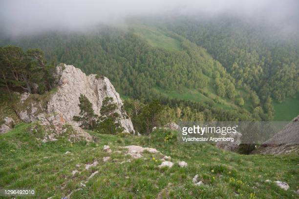 view of shisha valley from above, caucasus biosphere reserve - argenberg stock pictures, royalty-free photos & images