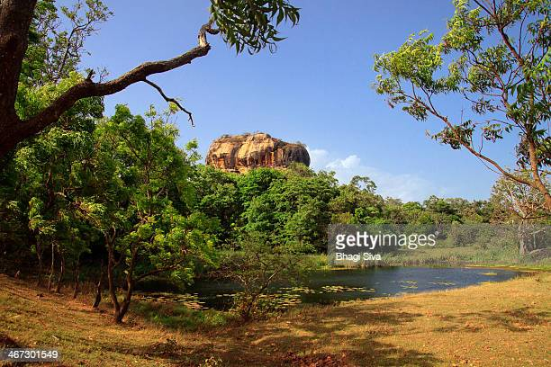 a view of sigiriya rock fortress - sigiriya stock photos and pictures