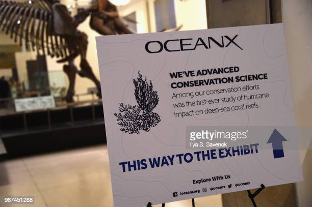 A view of signage during the Launch Of OceanX a bold new initiative for ocean exploration at the American Museum of Natural History on June 4 2018 in...