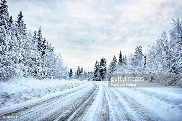 View of snow covered forest highway, Hemavan, Sweden