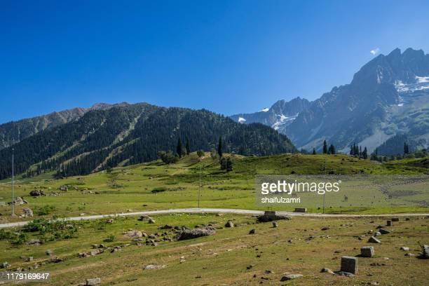 view of sonamarg valley in kashmir, india - shaifulzamri stock-fotos und bilder