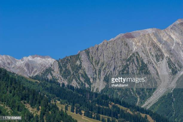 view of sonamarg valley in kashmir, india - shaifulzamri stock pictures, royalty-free photos & images
