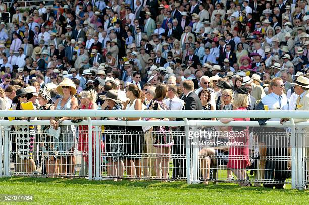 View of spectators watching the racing from the Gordon Stand on Ladies Day during the Glorious Goodwood Race of Champions Meeting at Goodwood...