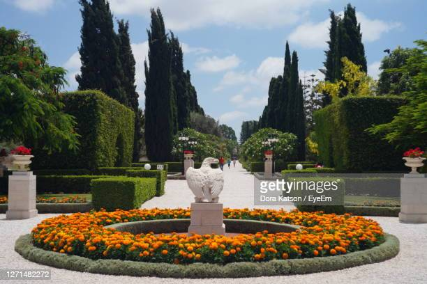 view of statue in garden.  old actr. bahai garden.  peasfull religious place. - israel stock pictures, royalty-free photos & images