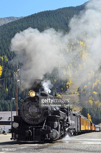 View Of Steam Engine Train Against Plants
