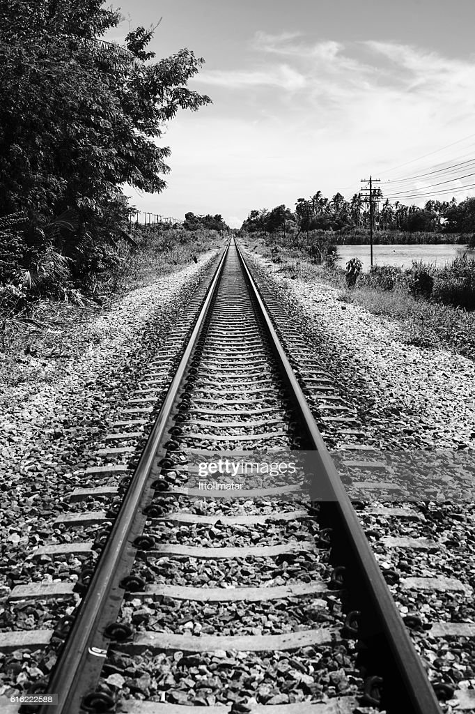 view of straight railway : Stock Photo