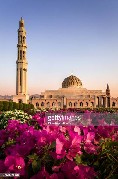 view of sultan qaboos grand mosque, oman - sultan qaboos mosque stock pictures, royalty-free photos & images