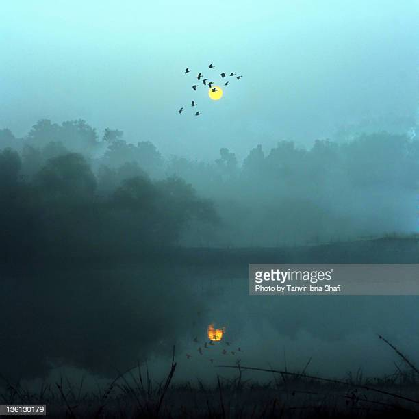view of sun in winter morning - savar stock pictures, royalty-free photos & images