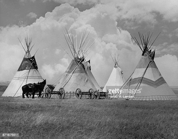 view of teepees and horse drawn carriages - {{relatedsearchurl(carousel.phrase)}} stock pictures, royalty-free photos & images