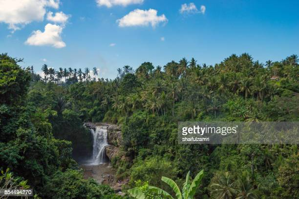 view of tegenungan waterfall, it is one of the many tourist places and destination in bali, indonesia. - shaifulzamri foto e immagini stock