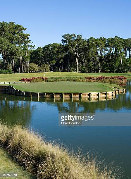 A view of the 17th hole of THE PLAYERS Stadium Course at the TPC Sawgrass Ponte Vedra Beach Florida