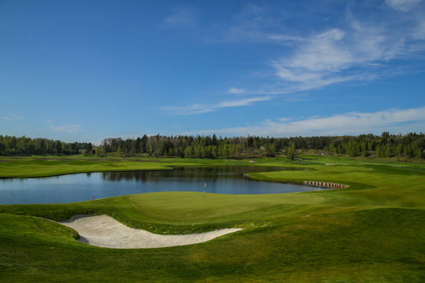SWE: Dormy Open - Previews