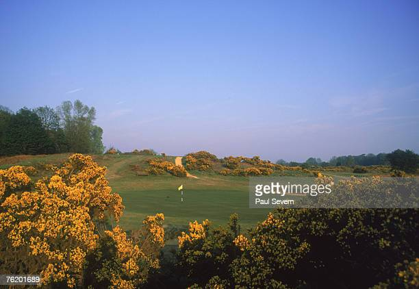 A view of the 8th green at Aldeburgh Golf Club Suffolk 1997