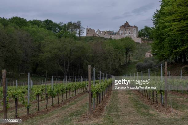 View of the abbey of Sant'Eustachio with the vineyards of the agricultural company Giusti Wine on April 20, 2020 in Treviso, Italy. The Italian...