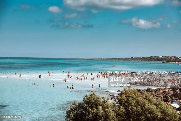view of the beach in stintino, sardegna island in italy - sardinia stock pictures, royalty-free photos & images