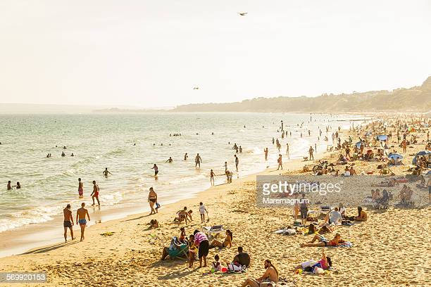 view of the beach - bournemouth stock pictures, royalty-free photos & images