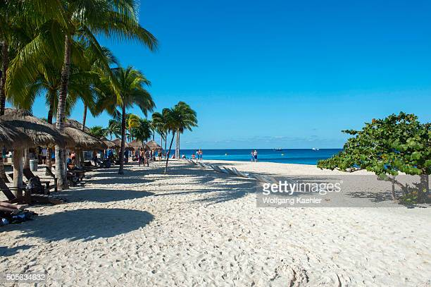View of the beach with coconut palm trees and palapas at Cozumel Chankanaab National Park on Cozumel Island near Cancun in the state of Quintana Roo...