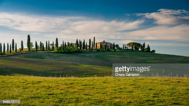 a view of the beautiful hills of the val d'orcia, tuscany - rolling hills sun stock pictures, royalty-free photos & images