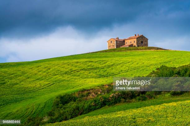 a view of the beautiful hills of the val d'orcia, tuscany - italian cypress stock pictures, royalty-free photos & images