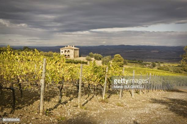 View of the Brunello Biondi Santi vineyards and farmhouse on October 21, 2011 in Montalcino, Italy. The grapes, which belong to the vineyards that...