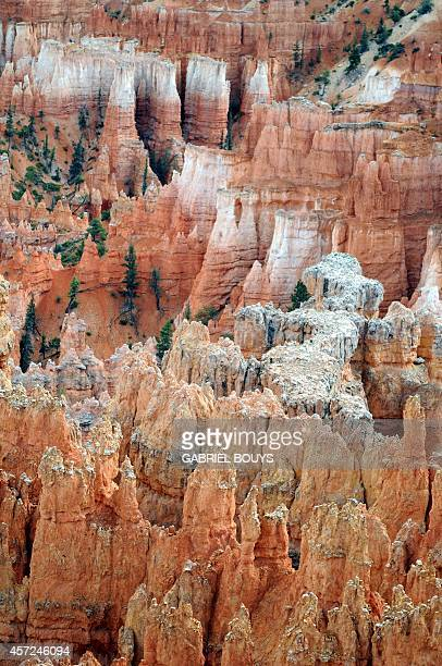 View of the Bryce Canyon National Park Utah on August 24 2009 Bryce Canyon is a small national park in southwestern Utah Named after the Mormon...