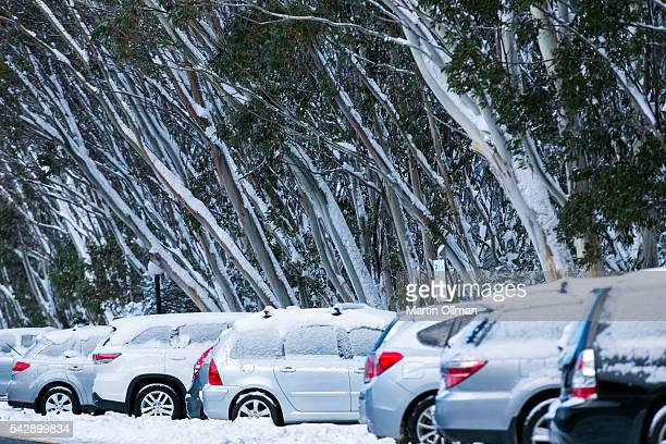 A view of the carpark on June 25 2016 in Thredbo Australia Snow has been forecast across Eastern Australia as cold front continues to bring low...