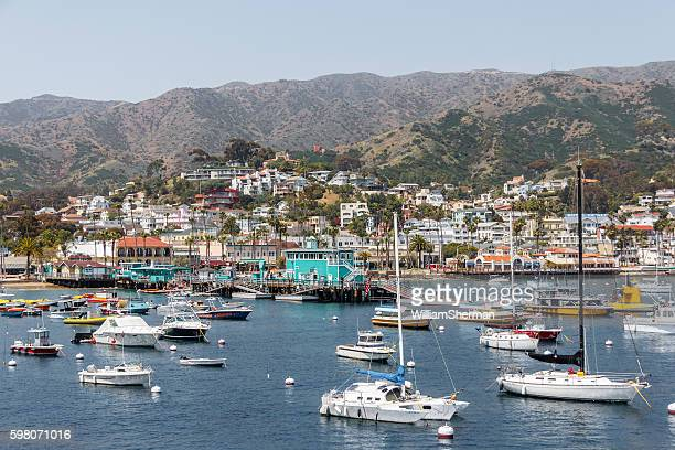 view of the catalina island harbor, southern california - catalina island stock photos and pictures