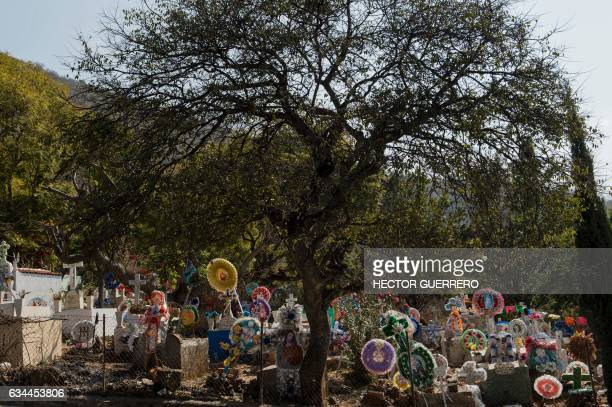 View of the cemetery in the community of San Pedro Itzican, on the banks of Lake Chapala, Mexico's largest lake and one of the most polluted, in...