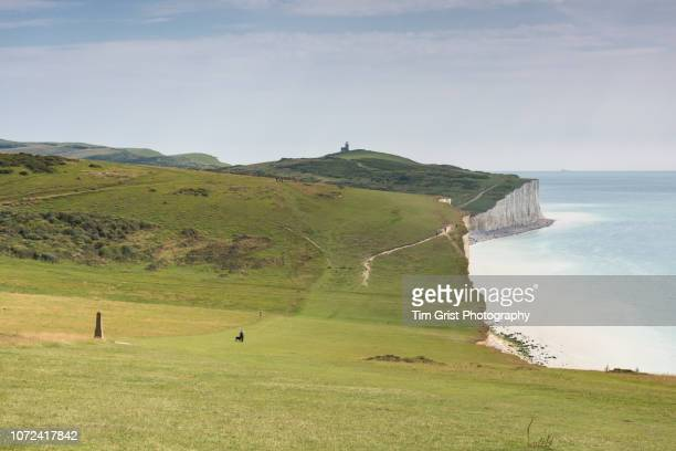 view of the chalk downland along the seven sisters cliffs, east sussex - belle tout lighthouse stock photos and pictures