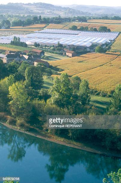 View of the Cingle de Limeuil and the strawberry tunnels of AllessurDordogne Vue du cingle de Limeuil et tunnels fraises d'AllssurDordogne