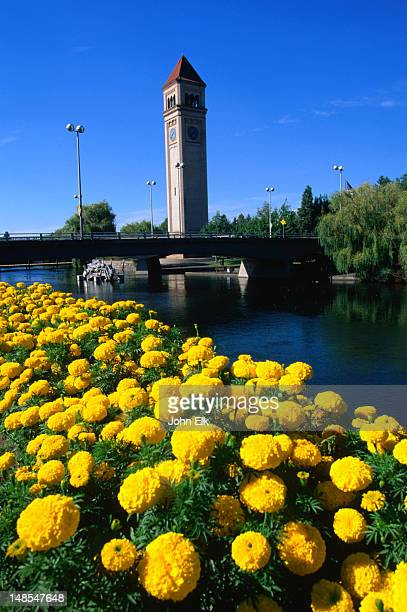 a view of the clock tower in riverfront park, from across the spokane river. - riverfront park spokane stock photos and pictures