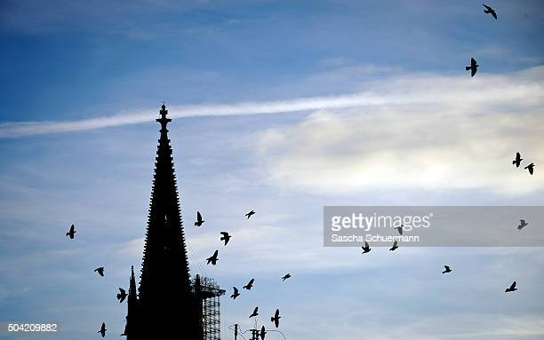 A view of the Cologne Cathedral on January 9 2016 in Cologne Germany on January 9 2016 in Cologne Germany Over 100 women have filed charges of sexual...