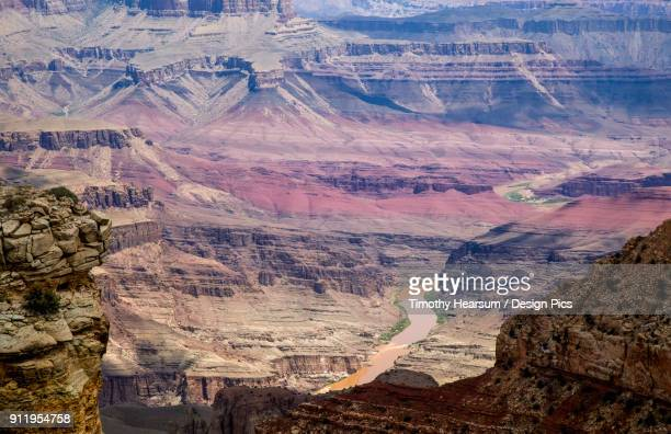 view of the colorado river and geological formations of the canyon from navajo point overlook at grand canyon national park, south rim near cameron, arizona in mid-summer - timothy hearsum stock pictures, royalty-free photos & images