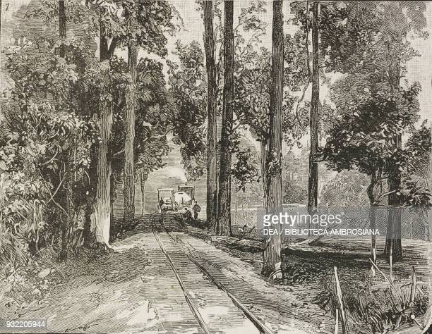 View of the Darjeeling Himalayan Railway incline India engraving from a photograph by Bourne Shepherd illustration from the magazine The Graphic...