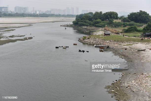 View of the deserted Yamuna river bank on the last day of the Ganesh Chaturthi festival at Kalindi Kunj bridge on September 12, 2019 in New Delhi,...