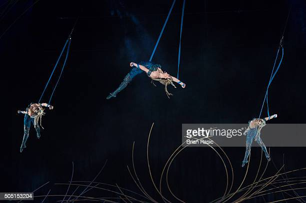 A view of the dress rehearsal of Amaluna by Cirque Du Soleil at Royal Albert Hall on January 15 2016 in London England