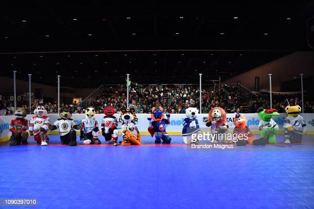 A view of the East Coast mascots during the NHL Mascot Showdown at San Jose McEnery Convention Center on January 27 2019 in San Jose California
