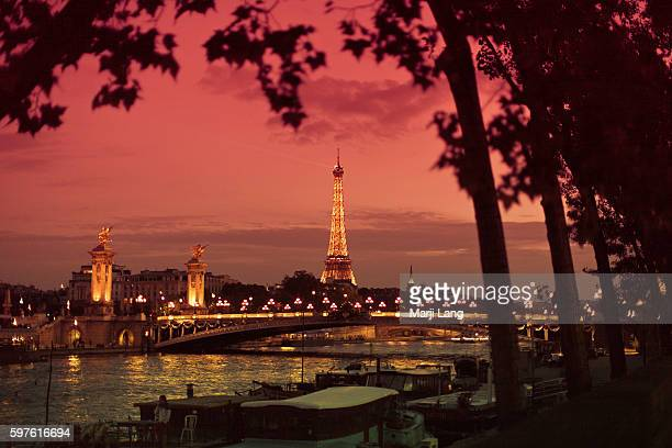 View of the Eiffel tower and pont Alexandre III by the Seine river at night