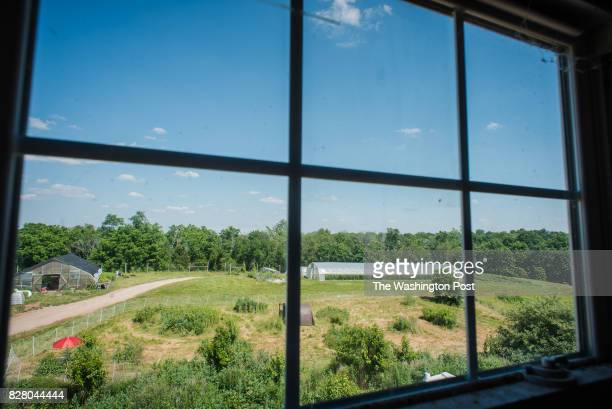 A view of the farm from the upper window of the farm offices Just beyond the tree line are residential homes They are in close proximity but out of...