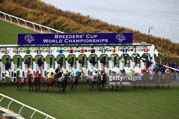 A view of the field during the Breeder's Cup Juvenile Fillies Turf on day one of the 2017 Breeder's Cup World Championship at Del Mar Race Track on...